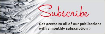 Sidebar Base Skinny 1 370×120  (Subscribe)